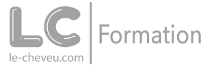 logo grey formation